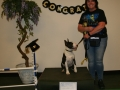 PDC-May-2018-Puppy-2018-05-21-003